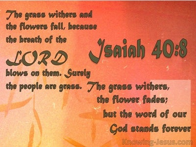 Isaiah 40:8 Flowers Fade : God's Word Stands (orange)